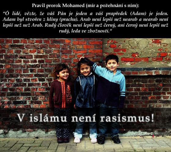 Islám Rasismus Romové Šaría pro česko